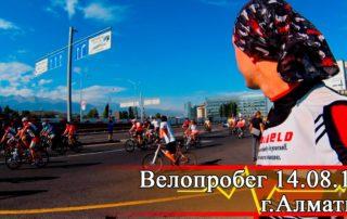 Велопробег Алматы
