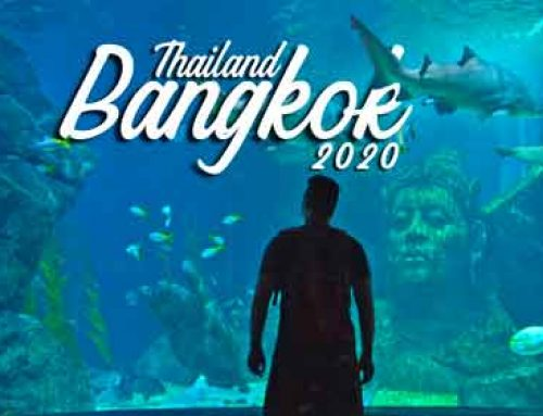 Океанариум Siam Ocean World, рынок с фруктами/цены, трущобы в Бангкоке. Беременность и перелет 2020