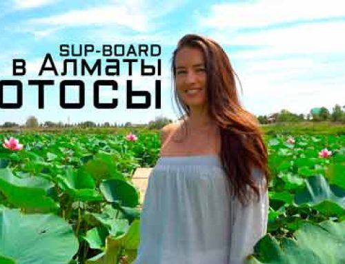 Красивое место с лотосами в Алматы. Прогулка на сапборде по Первомайским прудам. Живые эмоции.
